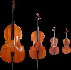 Unterschied Geige Bratsche Cello Kontrabass